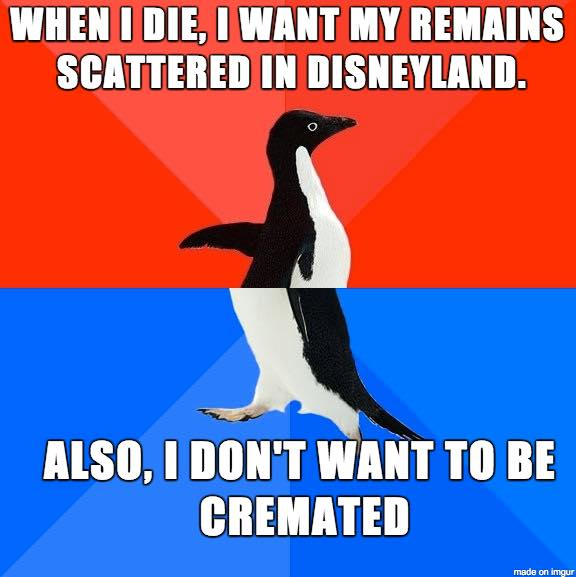The Picture Jokes thread - Page 2 Must-see-imagery-cremation-disneyland
