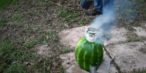 Bro Pours Molten Aluminum Into A Watermelon Because Art Has Died And Been Replaced By Its Cool Cousin Science