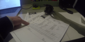GoPro Made Their Most Terrifyingly Insane Video Ever, Put A Camera On A Guy Who Works A Regular Office Job