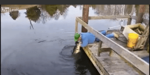 Old Man Wearing A Canadian Tuxedo And John Deere Hat Pulls A Big Ass Bass Outta The Water With His Bare Hands