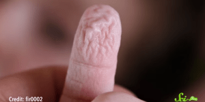 You Know How Your Finger Tips Wrinkle If You Stay In Water Too Long? Apparently They Do It For A Good Reason.