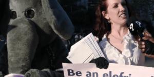 Hannibal Buress Brilliantly Trolled Vegans At PETA Protest