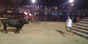 Not Satisfied With Getting Gored By Regular Bulls, Spaniards Get Destroyed By Bulls With Flaming Horns