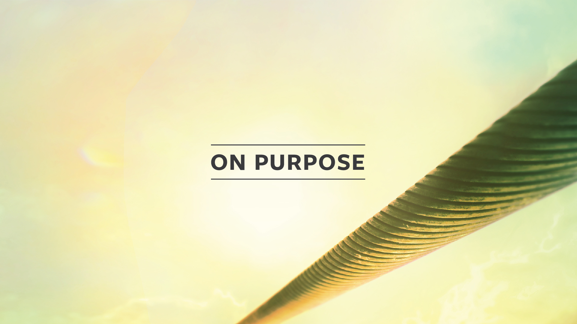 Seven Reasons Why You Must Be Purpose Driven
