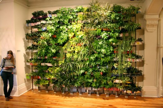 Living Wall by Adam Harris & Parimal Gosai