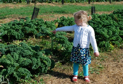 fishkill lady of the kale