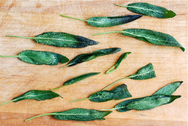 Fried sage leaves, via brooklynsupper.net; © Brooklyn Supper 2012, all rights reserved