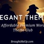 Elegant Themes : Most Affordable Premium WordPress Themes Review