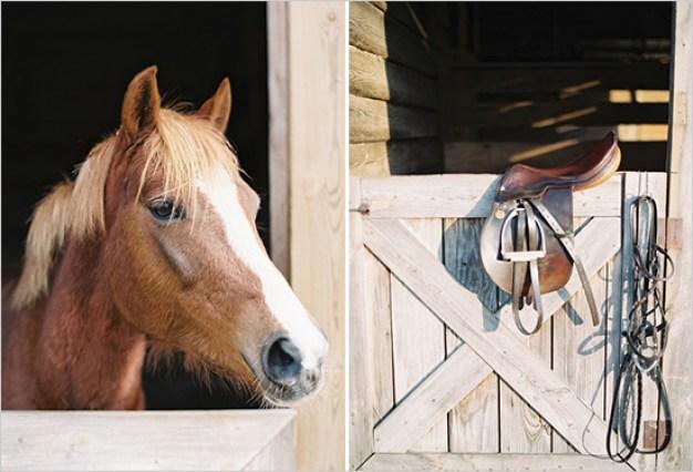 bryllup-hest
