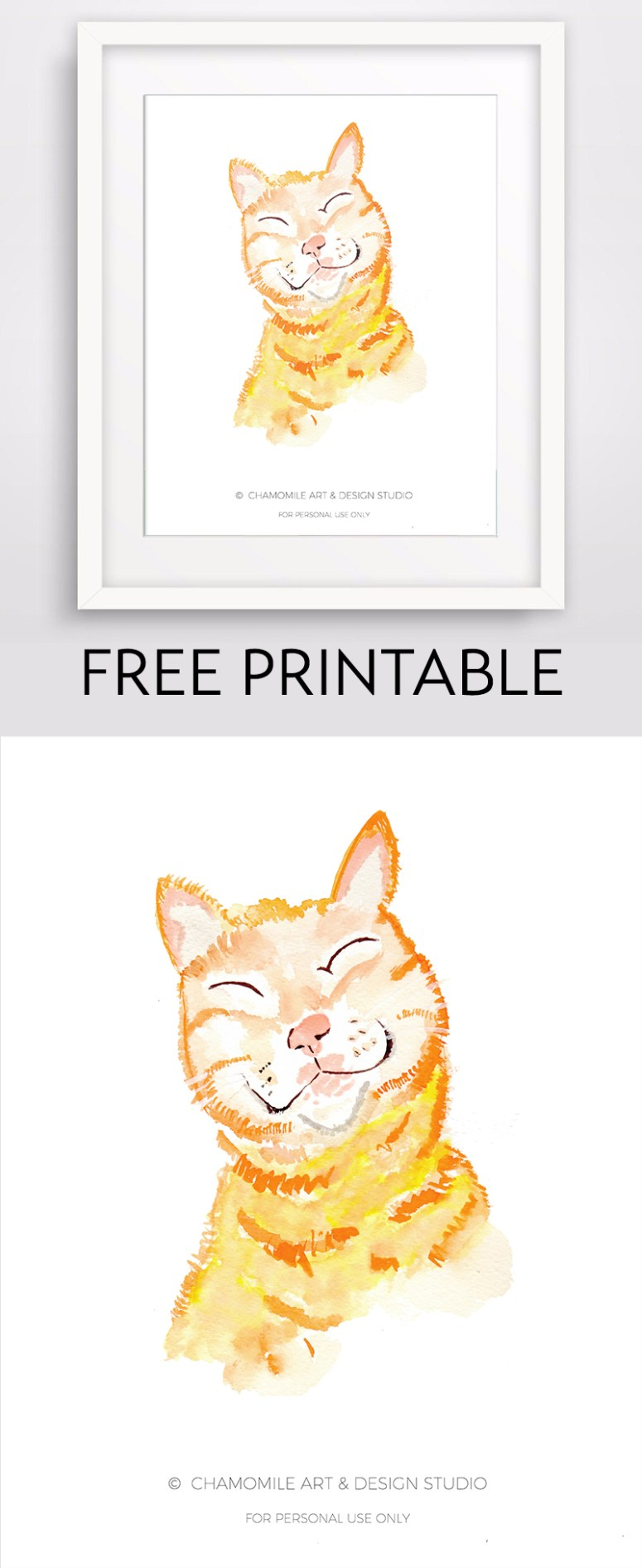 FREE-CAT-DISPLAY