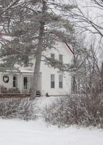 winter farm2