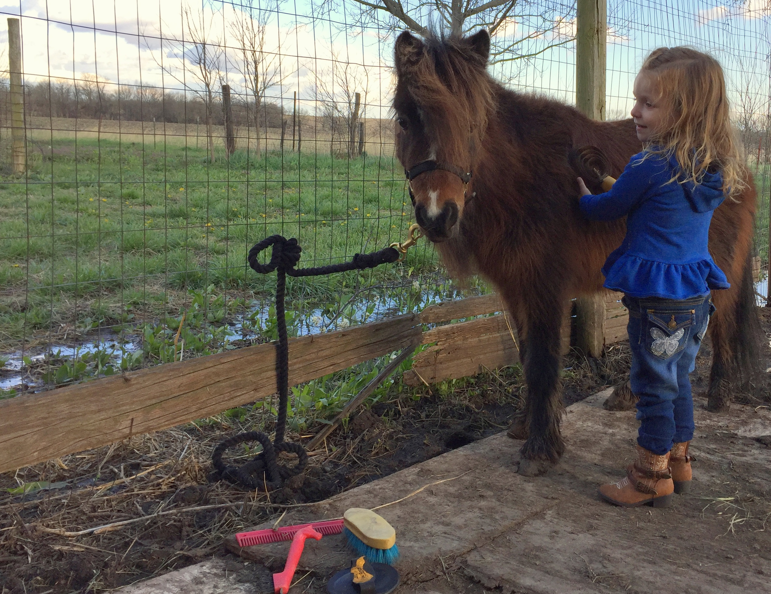 bryarton farm my little pony an answered prayer and a diy dress