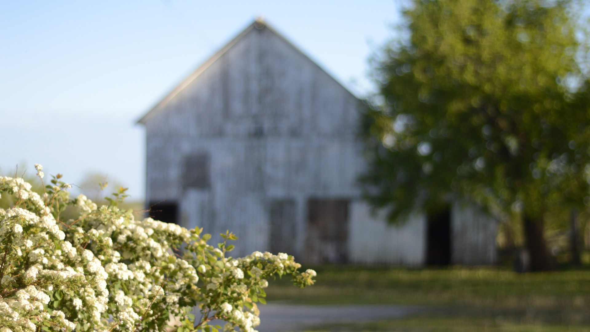 Farmhouse Restoration Update {Spring on Bryarton Farm Video}