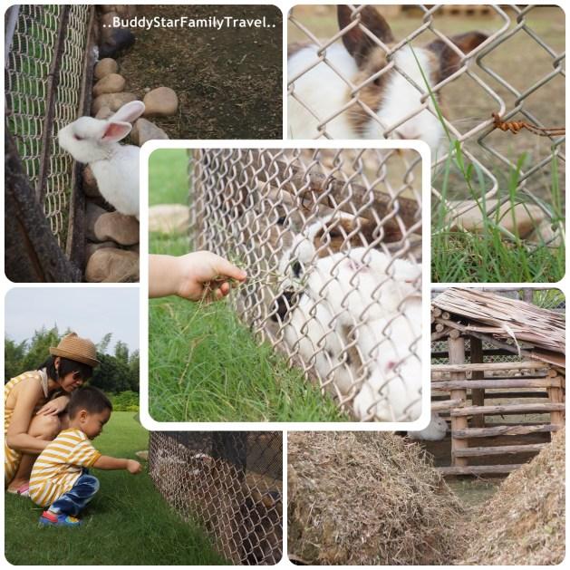 พาลูกเที่ยวสวนผึ้ง,พาครอบครัวเที่ยวสวนผึ้ง,พาลูกเที่ยว,พาครอบครัวเที่ยว,สวนผึ้ง,พาลูกเที่ยวเสาร์อาทิตย์, ที่เที่ยวเด็ก