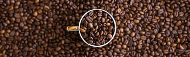 cafe sp