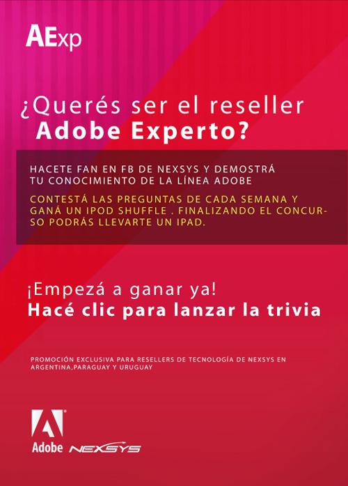 Adobe Experto con Nexsys