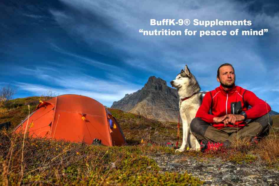 dog supplements and nutrition information questions and answers buffk9