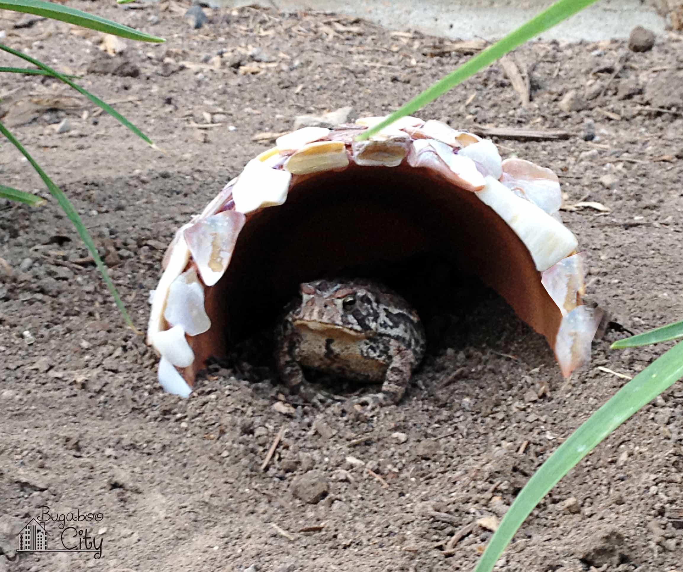 Diy toad houses bugaboocity Make your own toad house