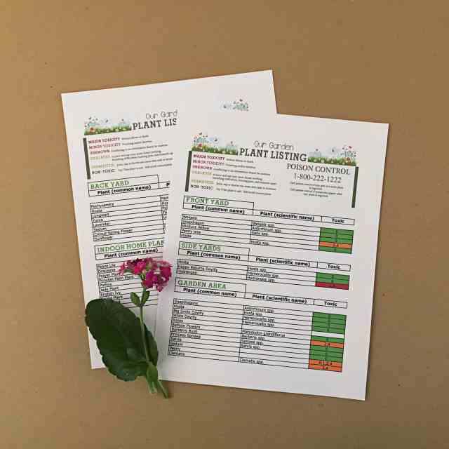 Garden Safety Sheet