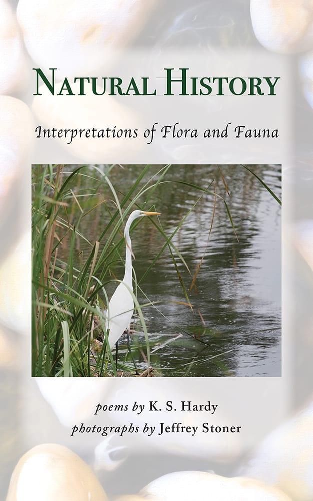 Natural History: Interpretations of Flora and Fauna   Jeffrey Stoner