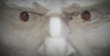 """Паметник на цар Самуил ще бъде поставен  при църквата """"Св. София"""" в Българската Столица. В конкурса за облика на монумента от 21 проекта журито даде най-много гласове за идеята на скулптора Александър Хайтов и ландшафтните архитекти Мария и Росен Гуркови."""