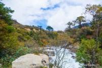 gurdongmar-lake (25)