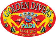 logo golden divers