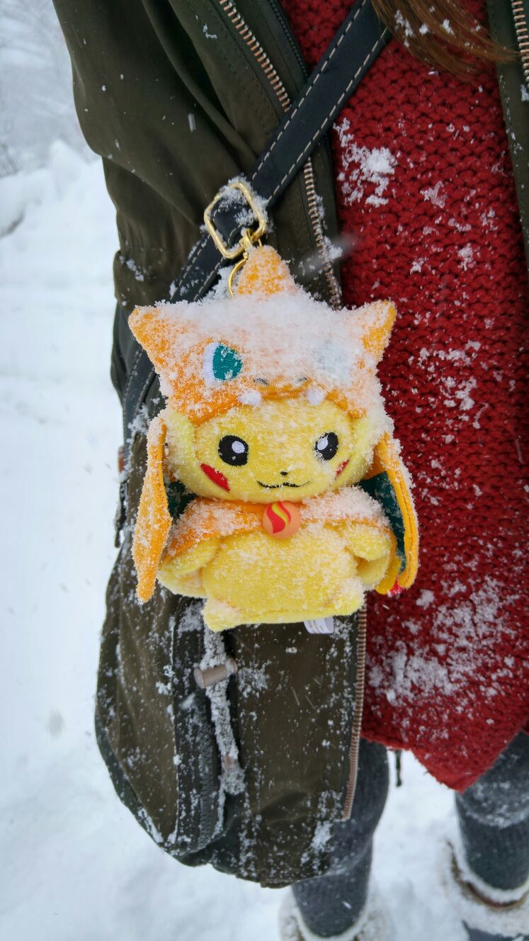 Pikazard covered in snow.