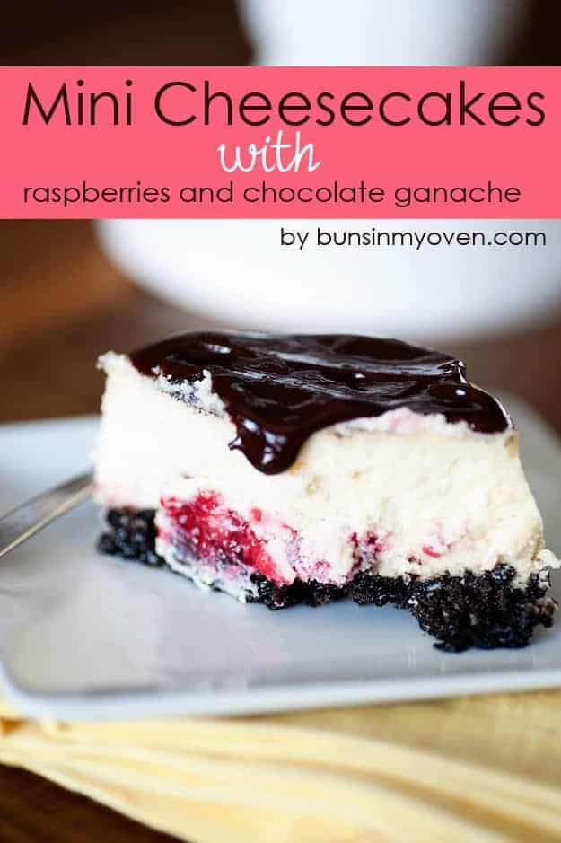 Mini Cheesecake Recipe with Raspberries and Chocolate
