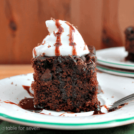 Double-chocolate-snack-cake1-1