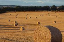 agricoltura(freefoto_7589952900@flickr_CC) terren