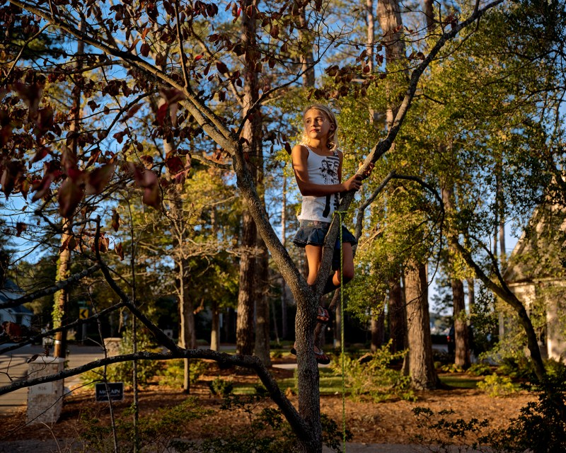 Girl_In_Tree-1