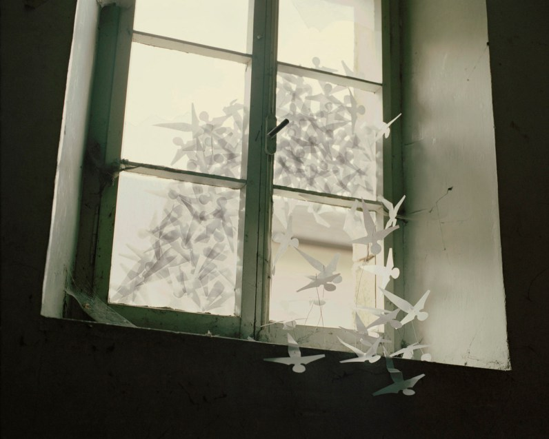 The image of the window with the paper birds is about the woman Sadako who at her home close to Ground Zero when the atom bomb was dropped in Hiroshima in 1945. Years later, she developed leukemia and was hospitalized in 1955 and given a year to live. She died in 1955 aged 12. During a hospital visit Sadako's best friend folds an origami crane as an old Japanese story says that who folds 1,000 origami cranes will be granted a wish by a crane. As Sadako didn't manage to fold all 1,000 cranes, her friends folded the remaining ones and buried them with her. With this image I want to speak about the war, the memory and the atomic bomb.