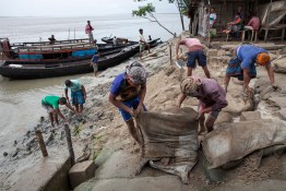 People work to repair the embankment designed to protect their island from river erosion. Bangladesh is one of the countries most vulnerable to the effects of climate change. The regular and severe natural hazards that Bangladesh already suffers from – tropical cyclones, river erosion, flood, landslides and drought – are all set to increase in intensity and frequency as a result of climate change. Sea level rise will increasingly inundate coastal land in Bangladesh and dramatic coastal and river erosion will destroy lands and homes. These and the many other adverse effects of climate change will severely impact the economy and development of the country.One of the most dramatic impacts will be the forced movement of people throughout Bangladesh as a result of losing their homes, lands, property and livelihoods to the effects of climate change. While it is impossible to predict completely accurate figures of how many people will be displaced by climate change, the best current estimates state that sea level rise alone will displace 18 million Bangladeshis within the next 40 years. The vast majority of these people will be displaced within Bangladesh – not across international borders – presenting the Government with enormous challenges, particularly when it comes to finding places to live and work for those displaced.
