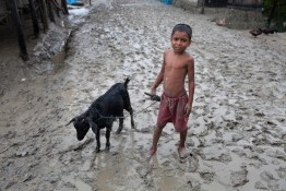 A boy with his goat at Shyamnagar in Satkhira. Bangladesh is one of the countries most vulnerable to the effects of climate change. The regular and severe natural hazards that Bangladesh already suffers from – tropical cyclones, river erosion, flood, landslides and drought – are all set to increase in intensity and frequency as a result of climate change. Sea level rise will increasingly inundate coastal land in Bangladesh and dramatic coastal and river erosion will destroy lands and homes. These and the many other adverse effects of climate change will severely impact the economy and development of the country.One of the most dramatic impacts will be the forced movement of people throughout Bangladesh as a result of losing their homes, lands, property and livelihoods to the effects of climate change. While it is impossible to predict completely accurate figures of how many people will be displaced by climate change, the best current estimates state that sea level rise alone will displace 18 million Bangladeshis within the next 40 years. The vast majority of these people will be displaced within Bangladesh – not across international borders – presenting the Government with enormous challenges, particularly when it comes to finding places to live and work for those displaced.