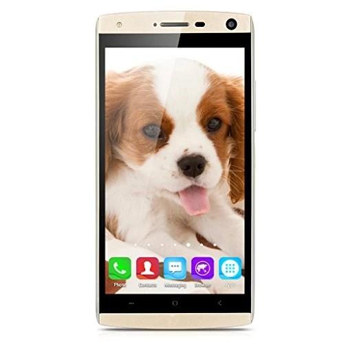 LANDVO V11 Débloqué Wake Smartphone Android 5.1 1.3GHz MT6580M Quad Core 4GO ROM Cellulaire Ultra-Fin (8.1mm de Ecran Tactile IPS qHD)-Gold