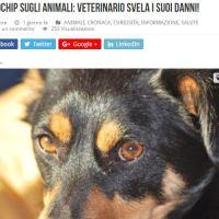 I danni del microchip sugli animali