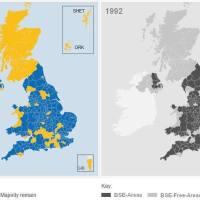 Brexit e mucca pazza?