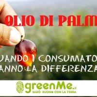 La chimica assolve l'olio di palma