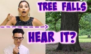 treefallsmakenoise_scientistdan