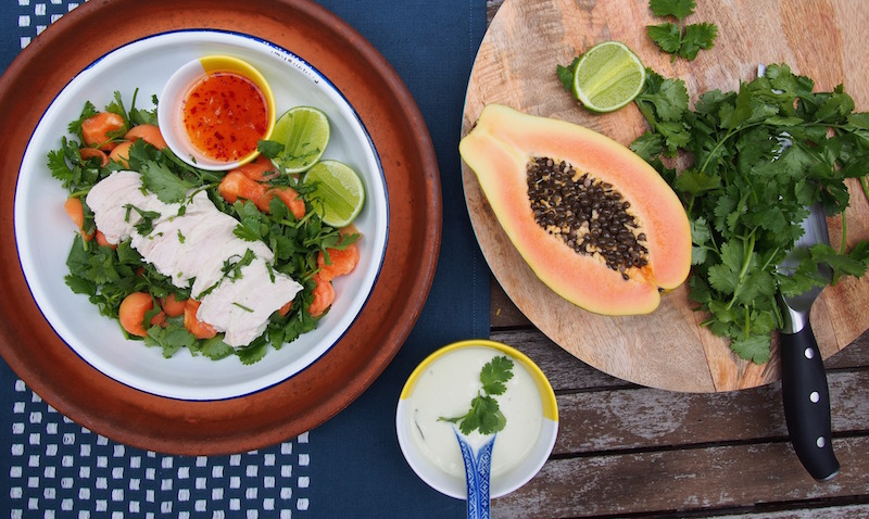 Poached Coconut Chicken with Papaya & Coriander, Healthy Light Salad, recipe By Rosie on The Rosedog Blog