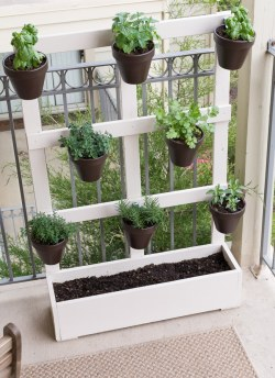 Small Of Wooden Herb Garden Planters