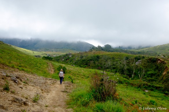 Last part of the hike up mount Mulanje