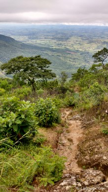 The very steep hiking trail up Mount Mulanje
