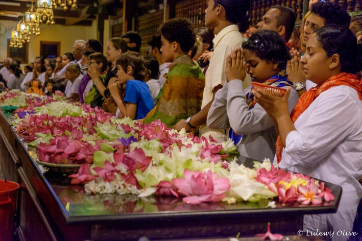 Praying and worshiping the tooth of Buddha, Kandy