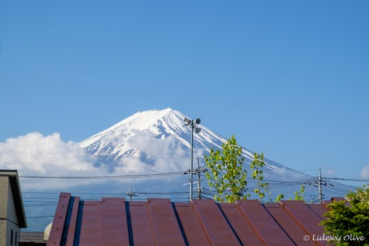 Mount Fuji from our accomodation