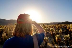 Rob overlooking Cholla cactus garden