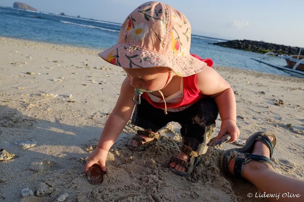 Picking up shells