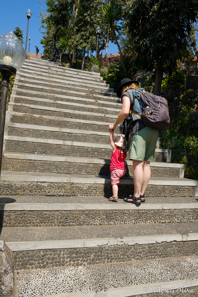 The stairs climbing the hill. Lily climbed the stairs all the way!