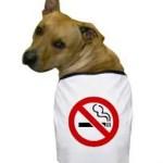 cigarro-cachorro